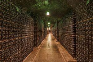 humidité cave a vin